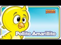 Canción infantil del pollito amarillito ideal para niños de edad pre escolar.