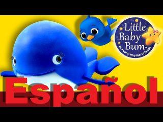 Canción infantil de la ballena azul. Little baby bum.